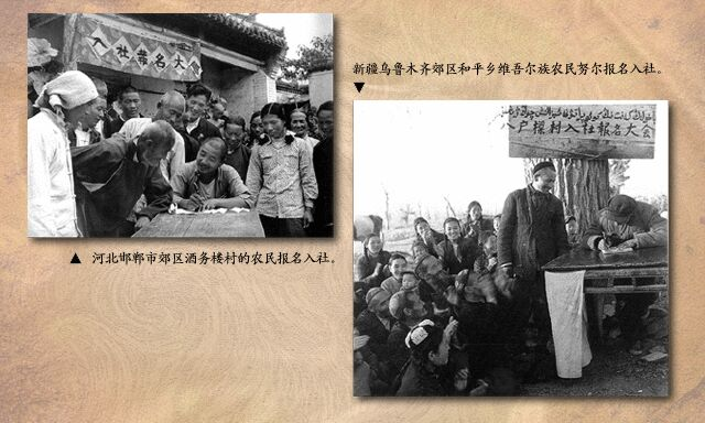 1953年:生产合作社