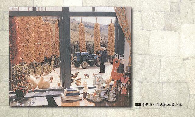 1991年:富裕的农家小院