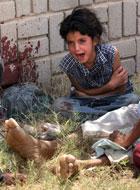 伊拉克儿童痛哭