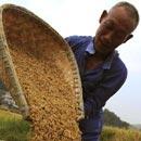 旱灾,不仅是农民的事