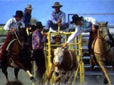 骑马套牛竞技