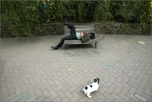 一名男子正躺在街头的长椅上睡觉